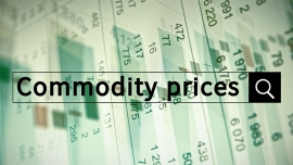 Fundamental analysis – Chapter V. – Commodity prices